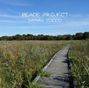 Peace Project 2